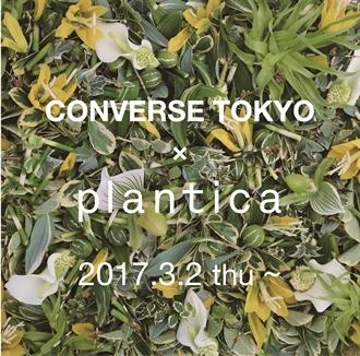 CONVERSE TOKYO × Plantica COLLABORATION